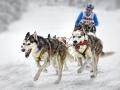Ludwig Loch, Germany -Sledge dogs