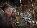 Danny Yen Sin Wong, Malaysia - Cutting Fish Kid