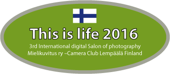 This is Life 2016 – Finland